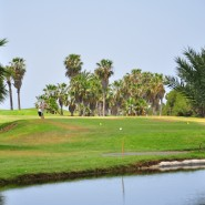 golf-tenerife-e1404718834343